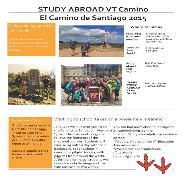 Camino 2015 poster small